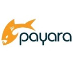 Payara_Logo_Blue_White_CMYK